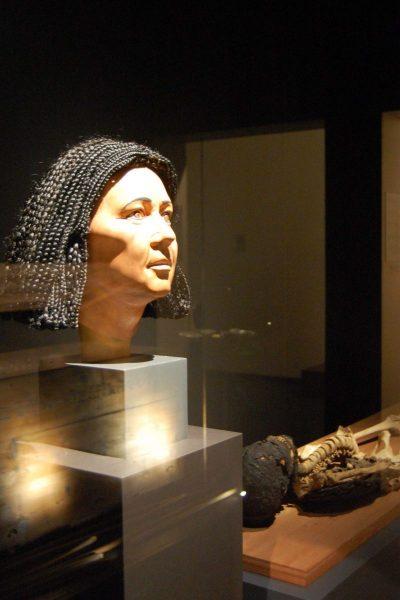 Idu mit Perücke heute im Roemer- und Pelizaeus-Museum in der Dauerausstellung Ägypten